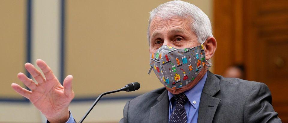 US-HEALTH-VIRUS-POLITICS-HEARING