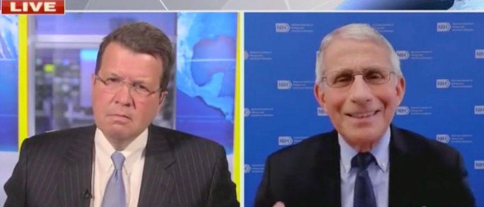 Neil Cavuto and Anthony Fauci (Screenshot/Fox News)