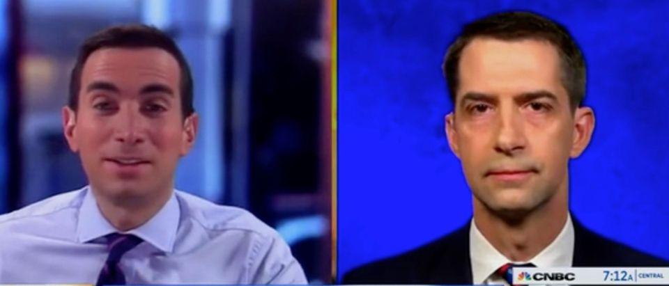 Andrew Ross Sorkin and Sen. Tom Cotton (Screenshot/CNBC)
