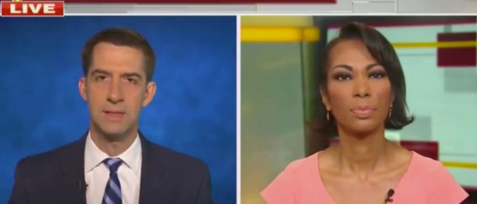 Sen. Tom Cotton and Harris Faulkner (Screenshot/Fox News)