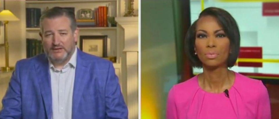 Sen. Ted Cruz and Harris Faulkner (Screenshot/Fox News)