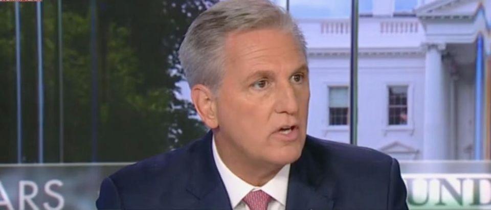 "House Minority Leader Kevin McCarthy appears on ""Fox News Sunday."" Screenshot/Fox"