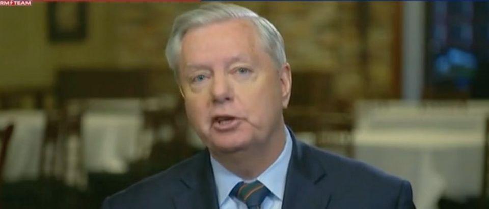 "Sen. Lindsey Graham appears on ""Fox News Sunday."" Screenshot/Fox"
