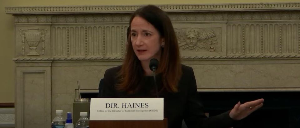 Avril Haines, the director of national intelligence, testifies before the House Intelligence Committee, April 15, 2021. (YouTube screen capture/House Intelligence Committee)