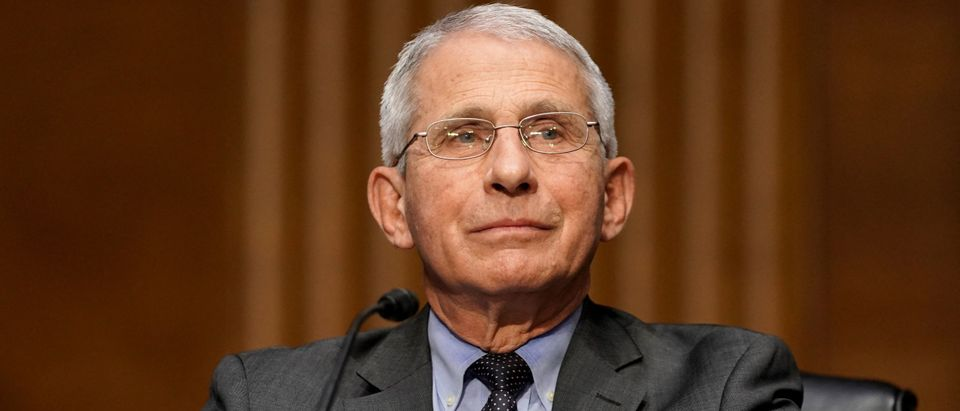 Fauci Not Confident COVID-19 Developed Naturally