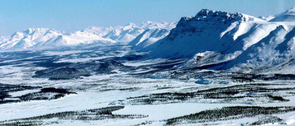 Arctic National Wildlife Refuge Eyed for Oil Drilling