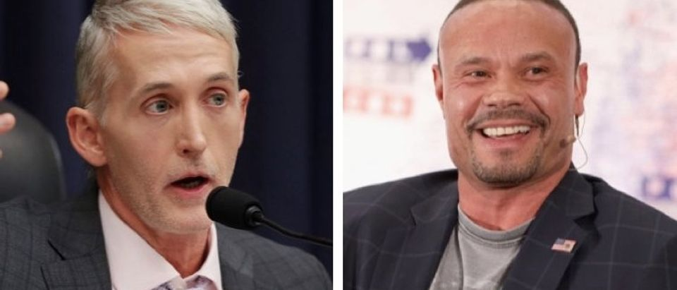 House Oversight and Government Reform Committee Chairman Trey Gowdy (R-SC) questions Deputy Assistant FBI Director Peter Strzok. (Photo by Chip Somodevilla/Getty Images)/Dan Bongino speaks onstage during Politicon 2018 at Los Angeles Convention Center on October 20, 2018 in Los Angeles, California. (Photo by Rich Polk/Getty Images for Politicon)