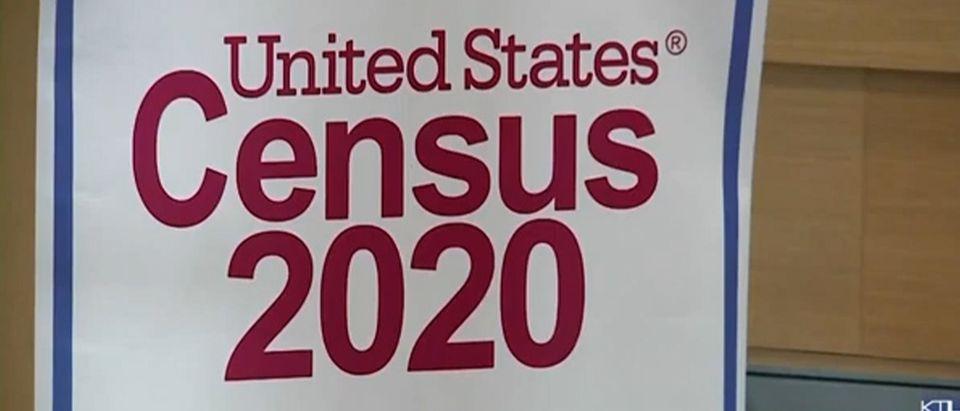 Census Count