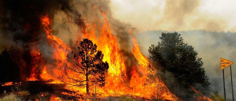 Arizona Wildfire Spreads, Governor Calls For Special Legislature