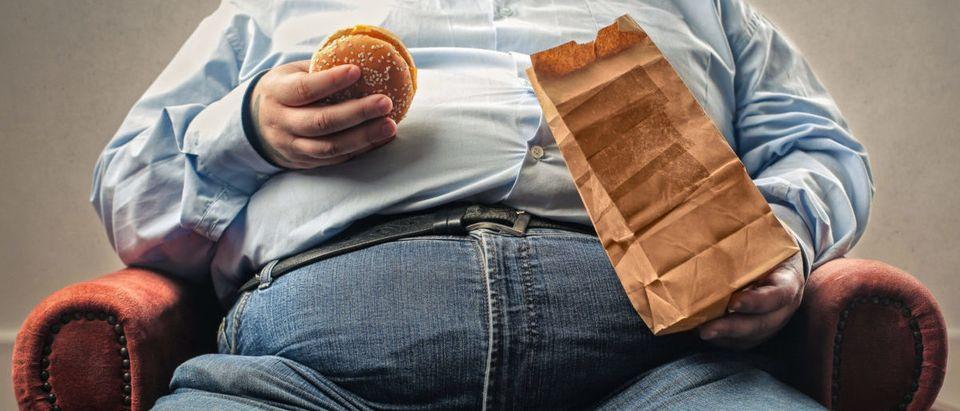 Fat Guy (Credit: Shutterstock/Ollyy)