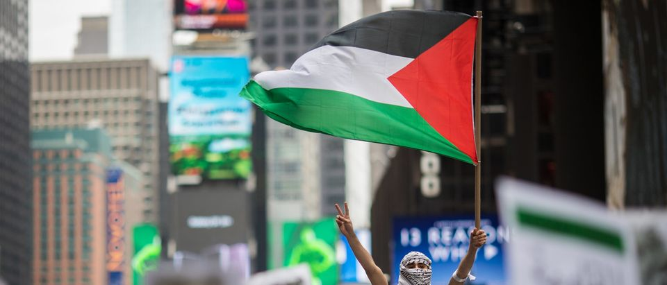 Activists Rally In Support Of Palestinians In Wake Of Recent Shooting Deaths By Israel In Gaza