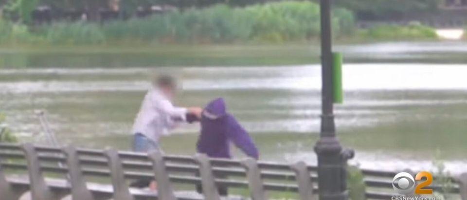 NYPD footage shows Gerardo Rosario Cruz mugging a woman in New York City's Central Park.