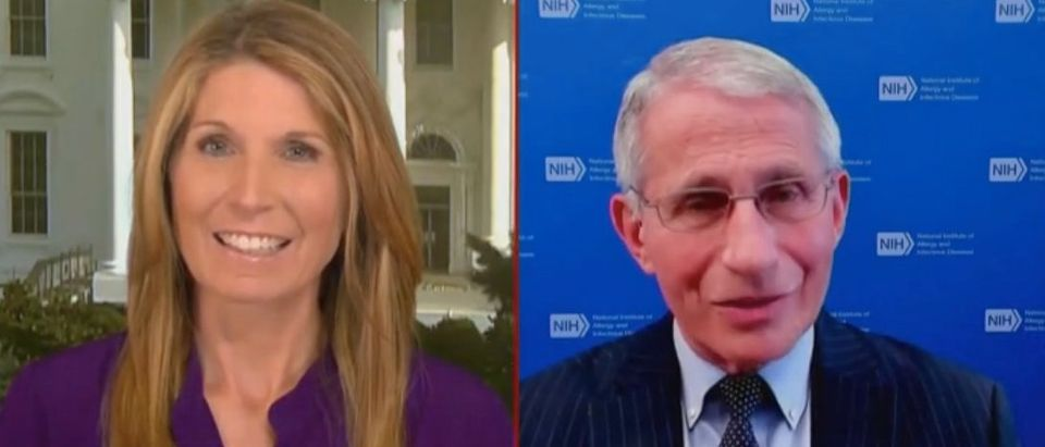 Nicolle Wallace interviews Dr. Anthony Fauci. Screenshot/MSNBC