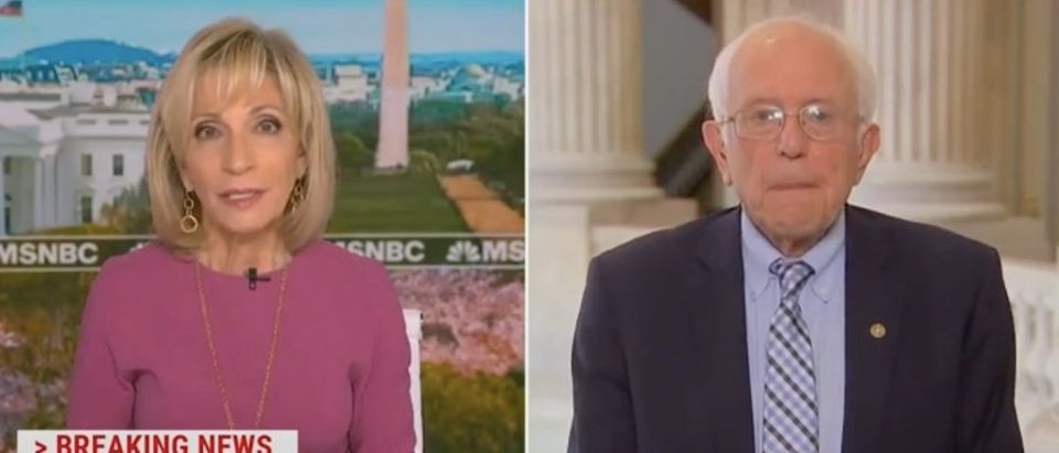 """Andrea Mitchell and Bernie Sanders appear on """"Andrea Mitchell Reports."""" Screenshot/MSNBC"""