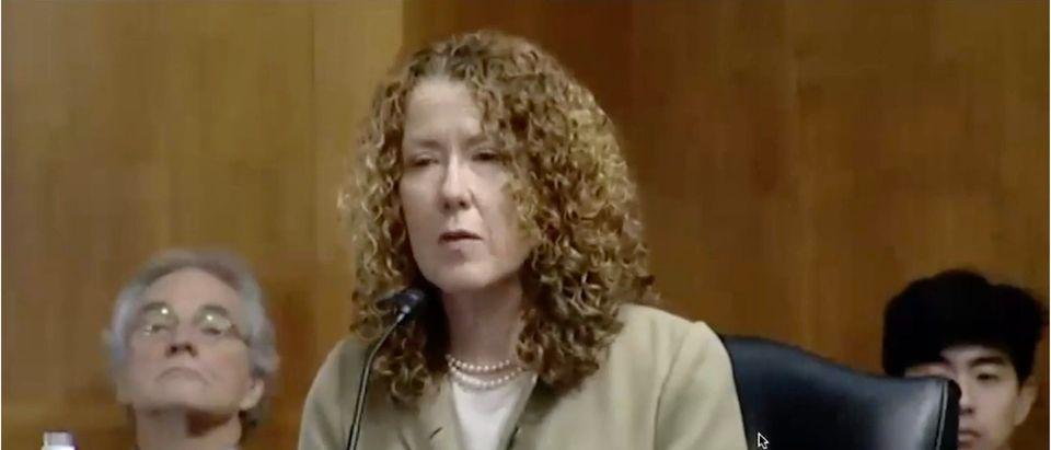 Tracy Stone Manning (Screenshot/YouTube)