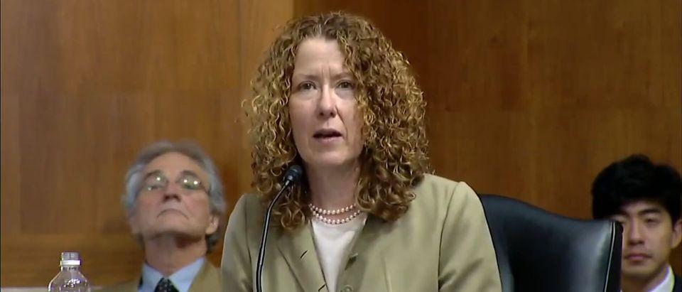Tracy Stone-Manning testimony Screenshot / YouTube / KPAX-TV