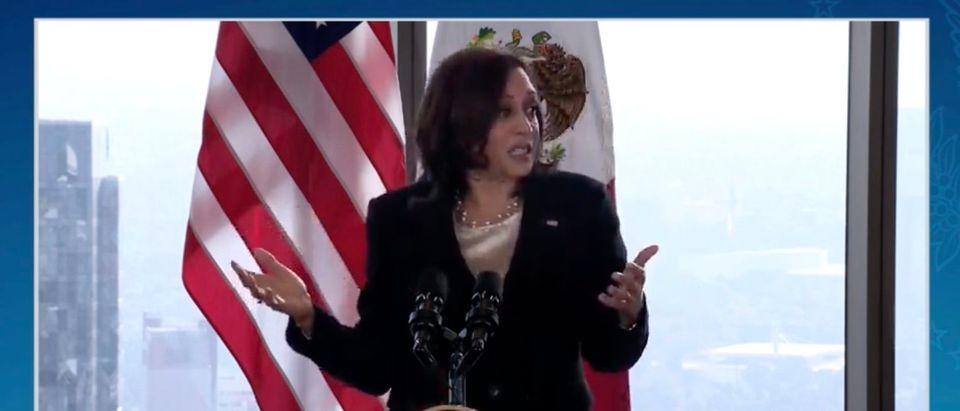 Kamala Harris said she will commit to visiting the border. (Screenshot White House)