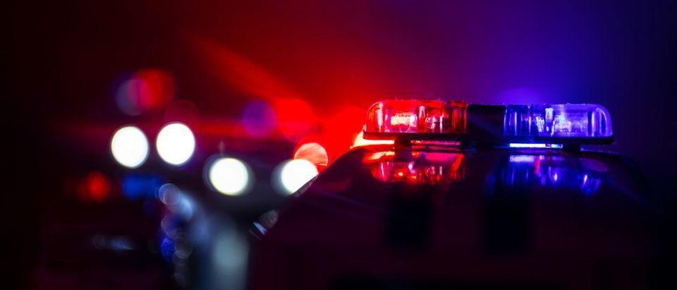 Police car lights at night [Shutterstock]