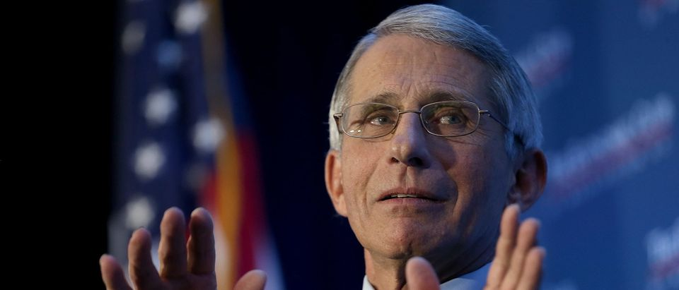 Anthony Fauci Getty