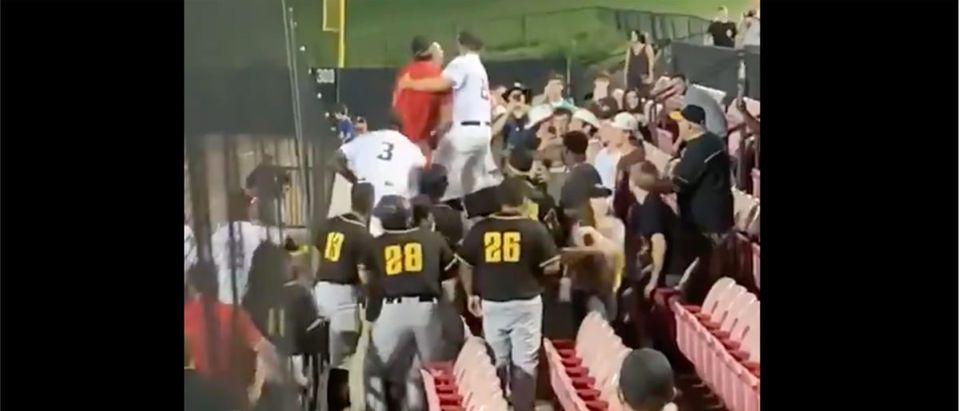 Baseball Fight (Credit: Screenshot/Twitter Video https://twitter.com/TJHitchings/status/1415858572500557826)