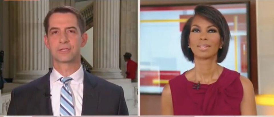 "Tom Cotton appears on ""The Faulkner Focus"" Screenshot/Fox News"