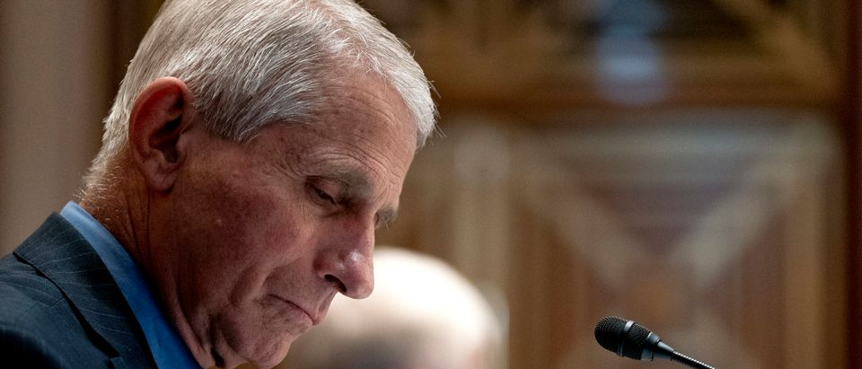 Dr. Anthony Fauci, Director of the National Institute of Allergy and Infectious Diseases, listens during a Senate Appropriations Subcommittee hearing May 26, 2021 on Capitol Hill in Washington, D.C. (Photo by Stefani Reynolds-Pool/Getty Images)
