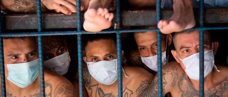 MS-13 Members Behind Bars Getty