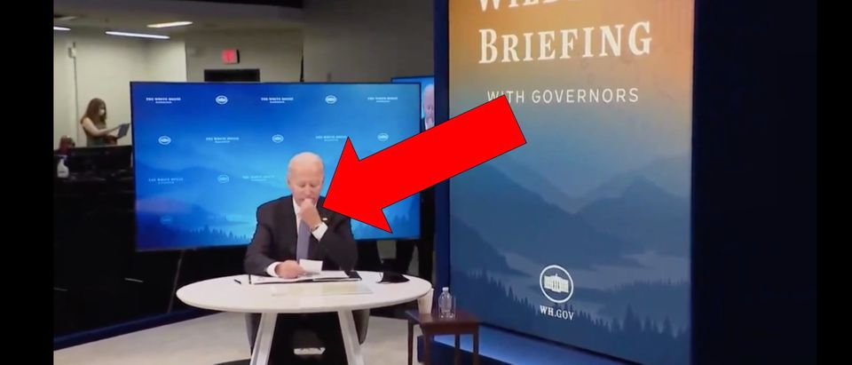Joe Biden Eats Something Off His Chin