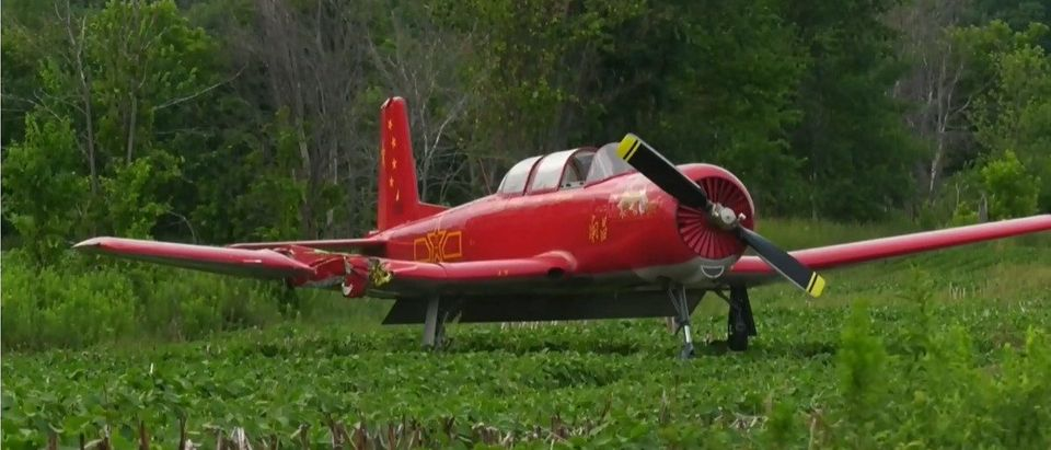 The airplane that killed the woman