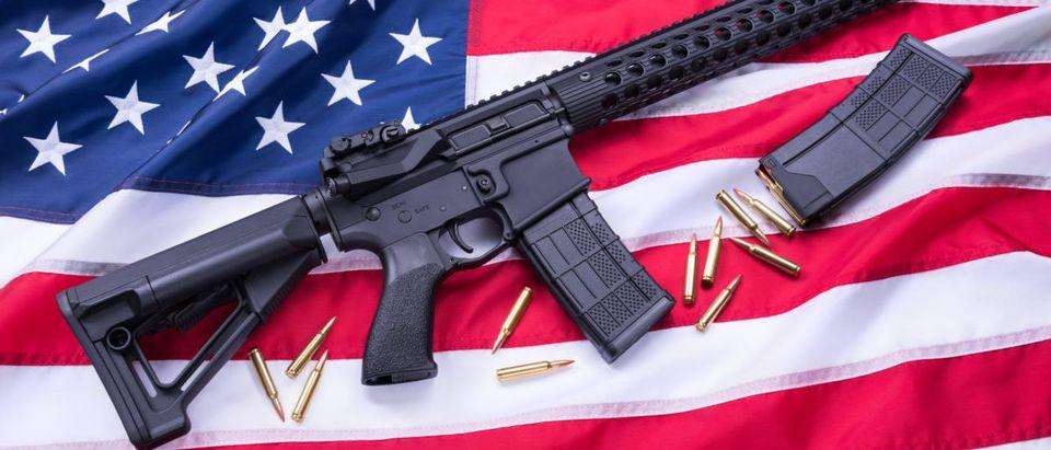 AR-15 (Credit: Shutterstock/ Mendenhall Olga)