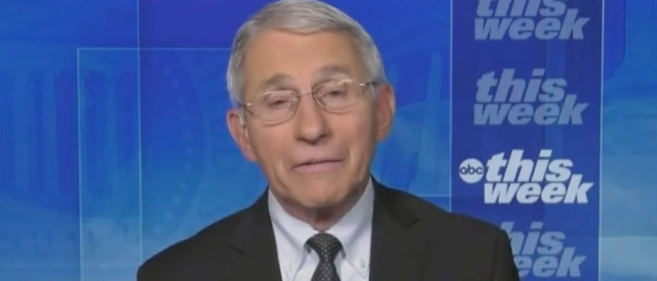 """Anthony Fauci appears on""""The Weekend"""" Screenshot/ABC News"""
