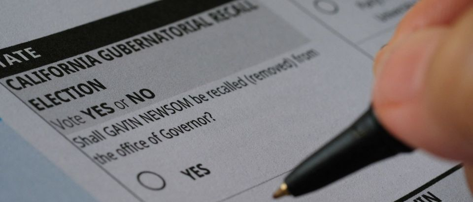US-POLITICS-ELECTIONS-GOVERNOR-CALIFORNIA-NEWSOM