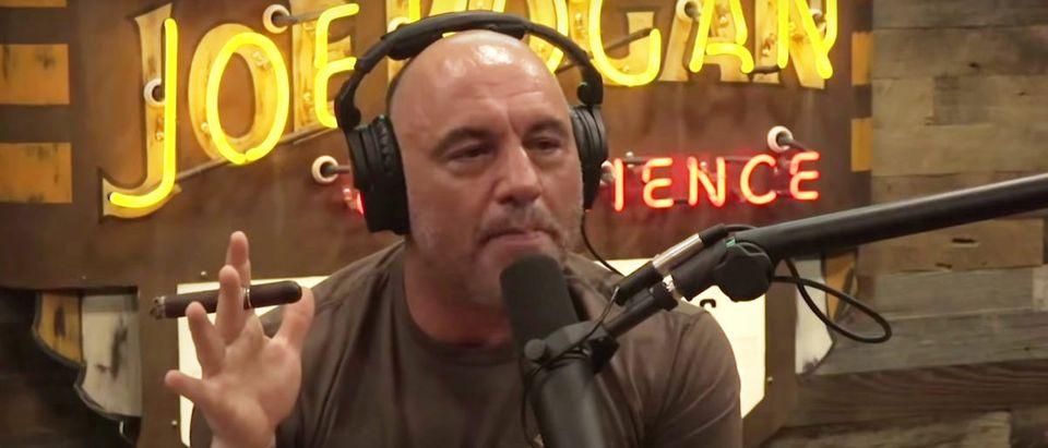 Joe Rogan (Credit: Screenshot/YouTube https://www.youtube.com/watch?v=tiwsv51Il4k)