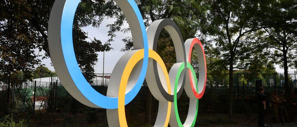 ANTWERP OLYMPIC RINGS OLYMPIADEPARK