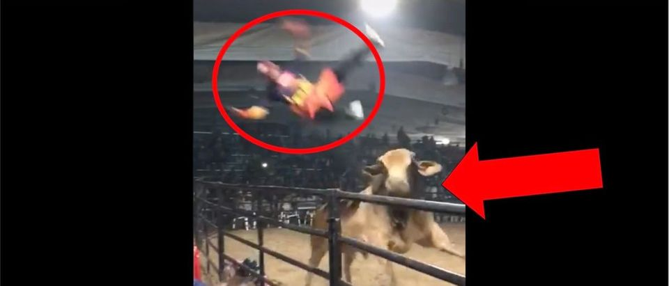 Rodeo Clown (Credit: Screenshot/TikTok Video https://www.tiktok.com/@jelvinlemus379/video/7002618706383637765)