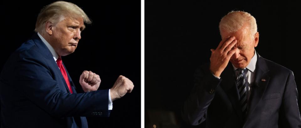 Trump v. Biden