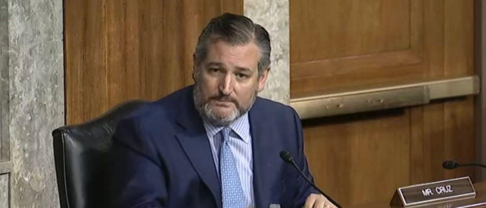 Ted Cruz Presses Deputy AG Kristen Clarke At Senate Hearing