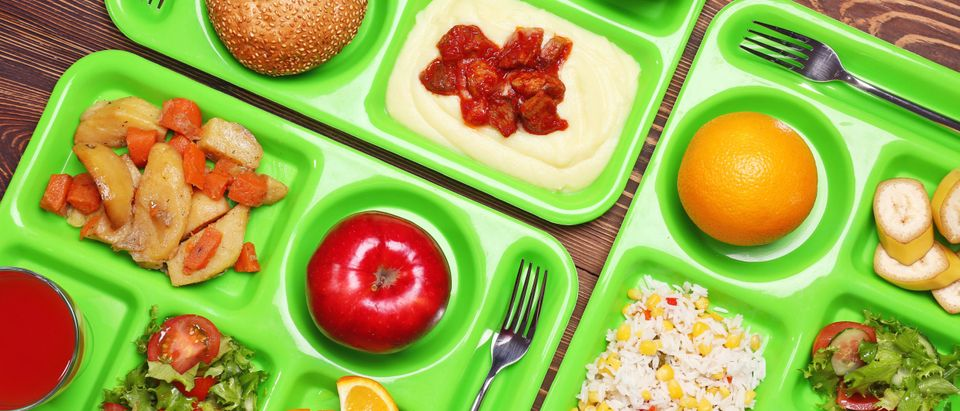 Serving trays with lunch foods [Shutterstock/Africa Studio]
